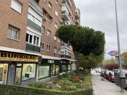 C/ Avda. San Luis