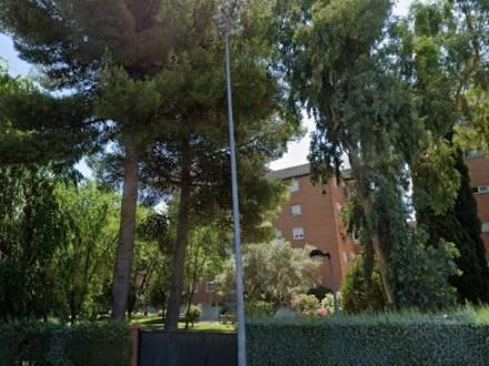 Avda. los pinos